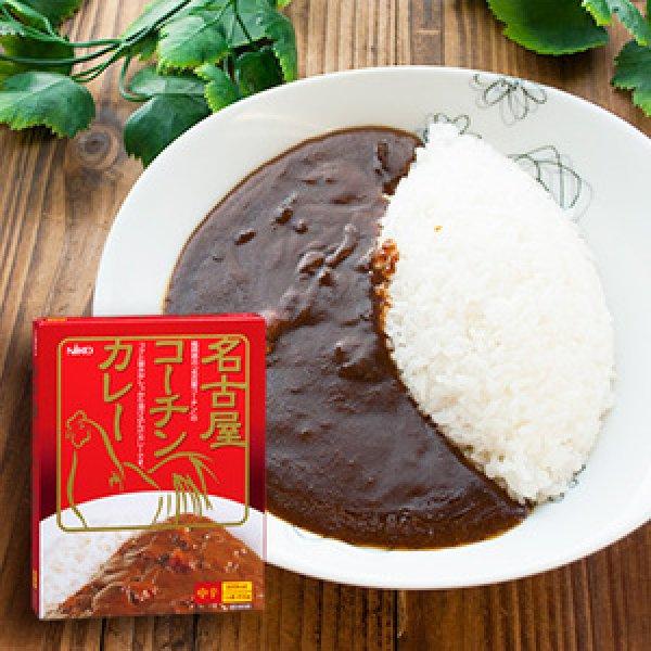Photo1: 'Nagoya Kohchin' premier chicken curry (1serving, 200g) (1)
